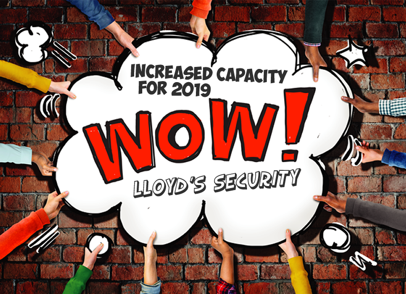 Increased capacity for 2019